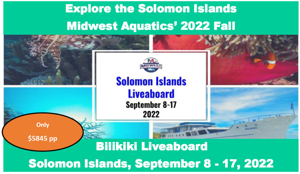 Solomon Islands Liveaboard 2022