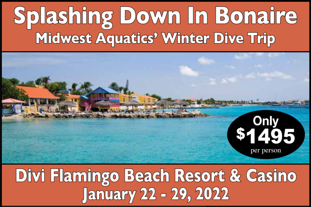 Bonaire - Divi Flamingo Beach Resort